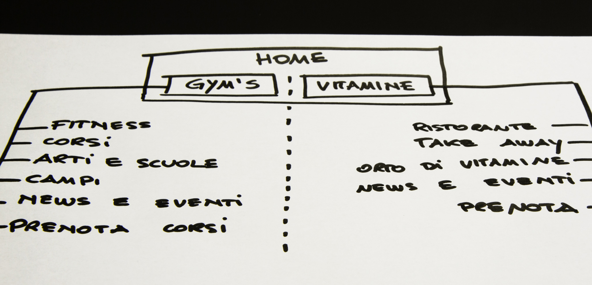 big_wireframe_gyms-vitamine